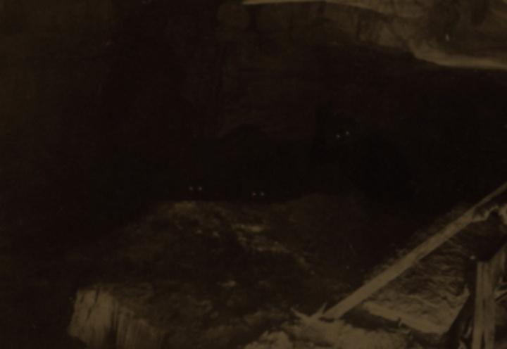 Cavecrypt